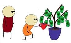 Peniaze na strome