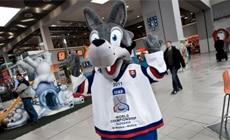 Goooly - maskot ms 2011 v hokeji