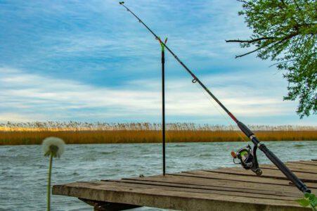 Rybárčenie - rybárske videá